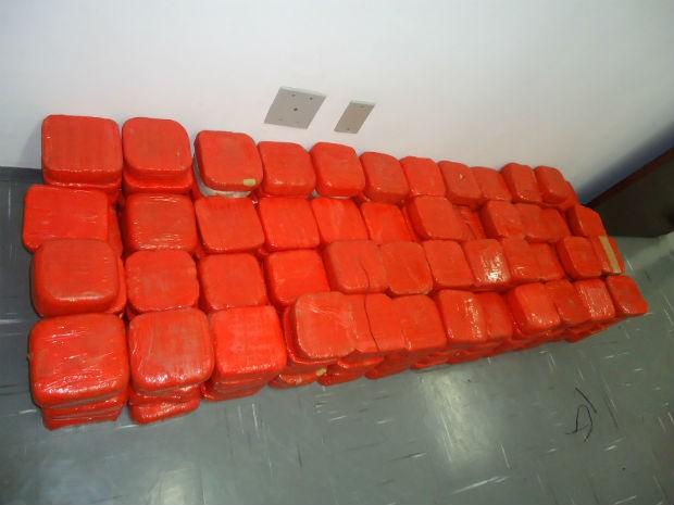 Polícia Federal apreende avião e 400 kg de cocaína em Porto Feliz (Foto: Eduardo Ribeiro Jr./G1)
