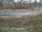 Explosivos e área desmatada são encontrados em reserva ambiental