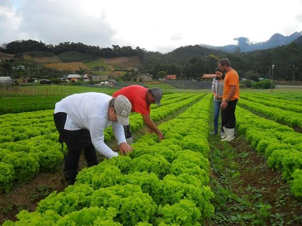 Cidade recebe incentivo para práticas sustentáveis (Foto: Paulo Filgueiras/Divulgação)