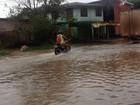 Defesa Civil monitora as 29 áreas com risco de alagamento em Macapá