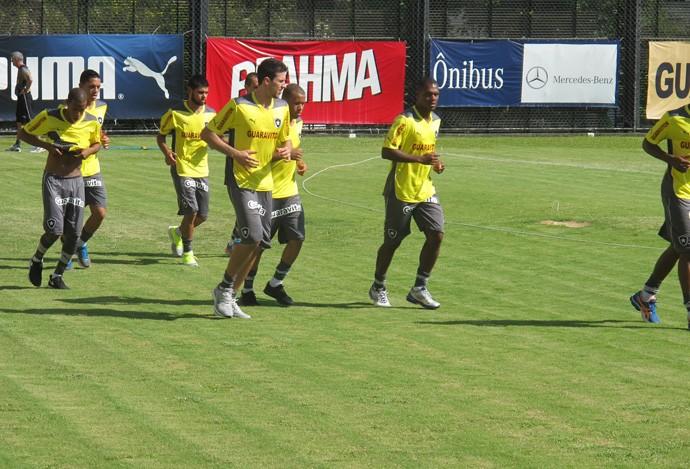 botafogo treino (Foto: Thales Soares)