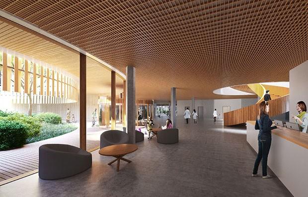 Zurique se preparar para receber Hospital Infantil horizontal e holístico em 2022 (Foto: Divulgação )