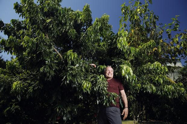 Stênio Garcia com a árvore dedicada a amiga Cacilda Becker (Foto: Marcos Serra Lima/EGO)