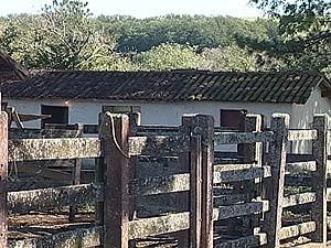 Os três trabalhavam em uma fazenda na zona rural da cidade (Foto: Reprodução/TV Integração)