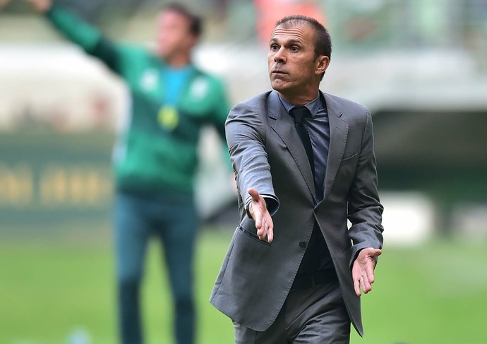 Milton Mendes Palmeiras x Santa Cruz (Foto: Marcos Ribolli)