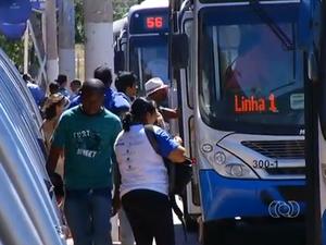 Ônibus Palmas Tocantins (Foto: Reprodução/TV Anhanguera)