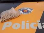 Boliviana é presa em Prudente com 57 cápsulas de cocaína no estômago