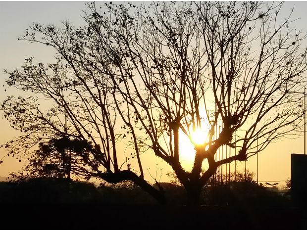 Primavera começou com sol nas primeiras horas do dia em Curitiba  (Foto: Luiz Fernando Martins )