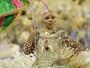 Rio tem protesto, 'fair play' e festa em verde e rosa (Rodrigo Gorosito/G1)