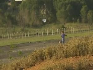 'Pipeiros' invadem pista de aeroporto em Cachoeiro (Foto: Reprodução/ TV Gazeta)