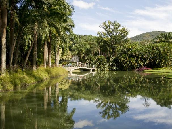 Jardins do Instituto Inhotim  (Foto: Ricardo Mallaco)