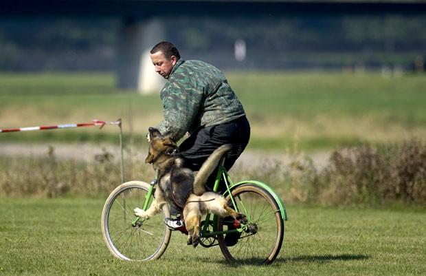 Cadela 'Nadja' ataca ladrão de bicicleta durante exibição. (Foto: Arno Burgi/AFP)