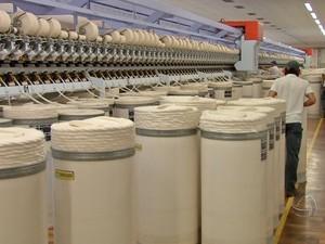 Indústria beneficiadora de algodão em Mato Grosso (Foto: Reprodução/TVCA)