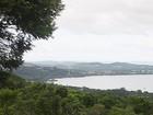 Porto Alegre é a capital com maior proporção de Mata Atlântica no Brasil