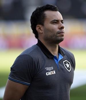 Jair Ventura em Botafogo x São Paulo (Foto: André Durão)