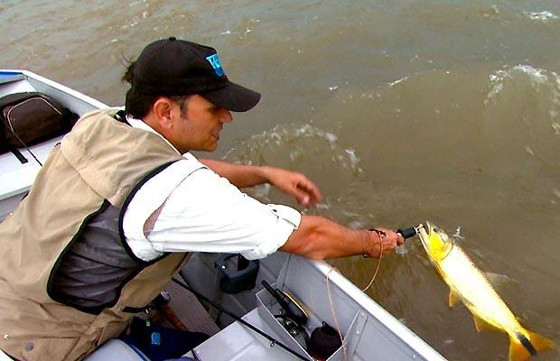 Repórter Eduardo Laerda devolve um dourado ao rio Uruguai (Foto: Reprodução EPTV)