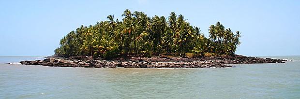 Îles de Salut (Ilhas da Salvação), na Guiana Francesa (Foto: Image courtesy of Patrick Weigelt/PNAS)
