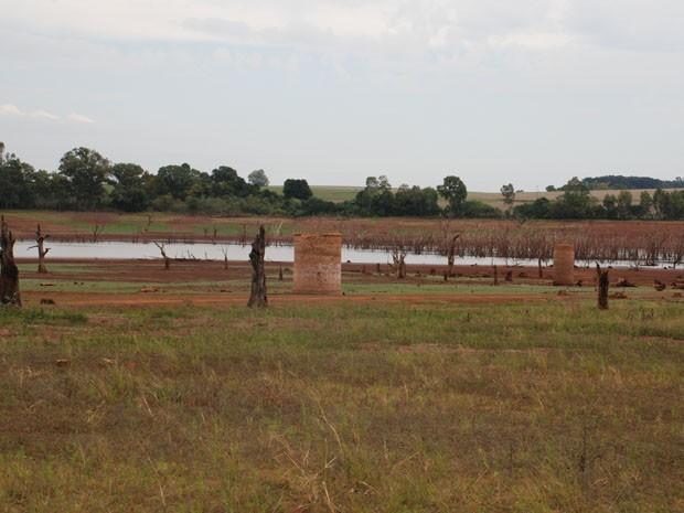Seca em 15 de Novembro, no Rio Grande do Sul (Foto: Fábio David Crestani/Divulgação)