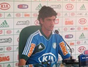 Fernandinho, jogador do Palmeiras (Foto: Diego Ribeiro/Globoesporte.com)