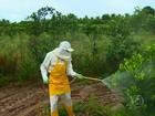 Fórum de saúde discute sobre os agrotóxicos e impactos em Petrolina