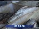 Quaresma inicia com preço do peixe até 50% mais caro em Teresina
