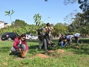 Plantio de mudas está entre as atividades da Semana do Meio Ambiente de Resende (Foto:  AMAR/PMR)