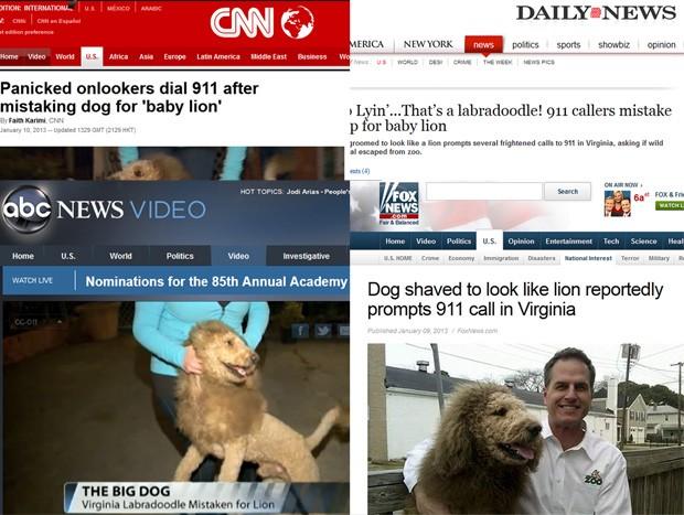 Repercussão a respeito da história do labrador foi intensa nos EUA (Foto: Reprodução)