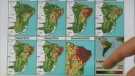 Chuva de outono não deve ser suficiente para amenizar efeitos da seca em Alagoas