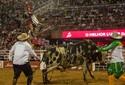 Fotos: Veja a final do Rodeio Internacional de Barretos