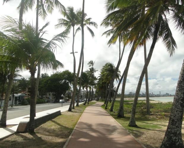 João Pessoa é uma cidade muito arborizada (Foto: Domingão do Faustão/TVGlobo)