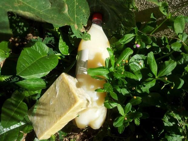 Óleo de cozinha usado se transforma em sabão (Foto: Juirana Nobres/ G1 ES)