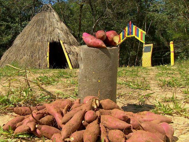 Invenção facilita a vida de aldeia em Avaí (Foto: Reprodução/TV TEM)