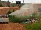 Em ação antidengue, DF passa fumacê em oito regiões nesta terça