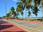 Projeto ambiental é lançado e vai plantar 60 mil mudas na Paraíba