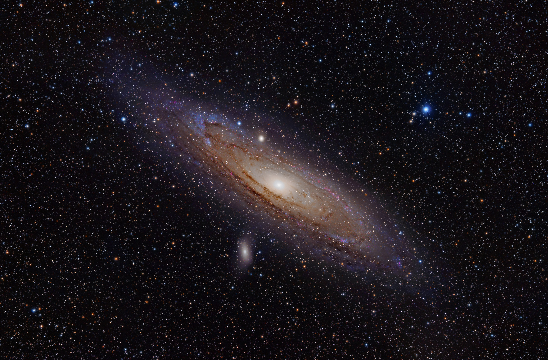 A galáxia de Andrômeda (Foto: Wikimedia/Adam Evans)