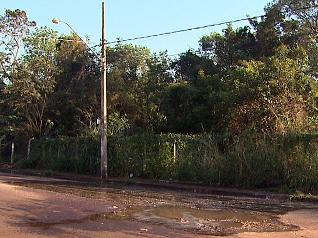 Esgoto toma conta de rua na Zona Leste de Ribeirão Preto (Foto: Antônio Luis/ EPTV)