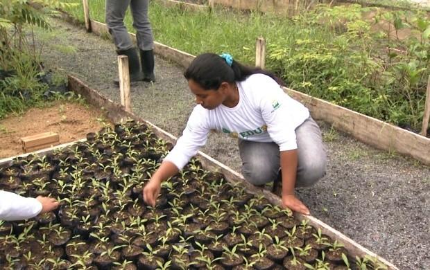 Agricultores se preparam para a I Feira de Agricultura Familiar da UFRR (Foto: Bom Dia Amazônia)
