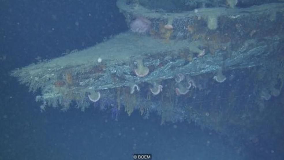 O arco do iate naufragado Anona (Foto: BOEM via BBC)