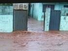 Falta de galerias causa enchentes há 7 anos em Serra Azul, dizem moradores