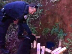 Drogas foram encontradas enterradas em  matagal (Foto: GCM/Divulgação)