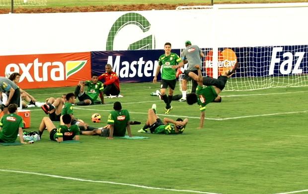 capoeira treino Brasil seleção (Foto: Thiago Correia)