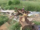Terreno com lixo e gavetas alerta para risco de dengue: 'Falta de respeito'
