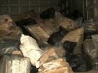 Polícia realiza incineração de duas toneladas de drogas em São Luís