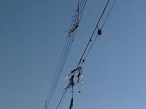 """Pedaços de pipas """"decoram"""" rede elétrica (Foto: Reprodução/TV Integração)"""