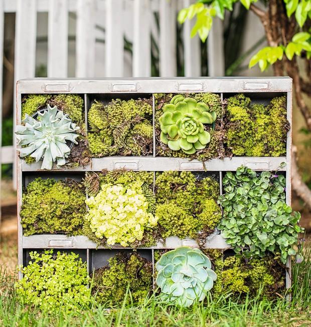 A caixa organizadora de zinco Villa Pano comporta um minijardim vertical, com musgo e suculentas (Foto: Elisa Correa / Editora Globo)