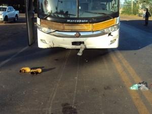 Acidente foi na BR-251, em Montes Claros (Foto: Polícia Militar/Divulgação)