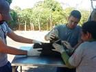 CCZ realiza plantão de chipagem e coleta de sangue de cães no PUM