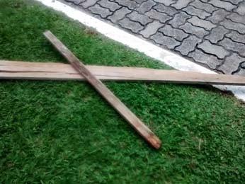 Pedaços de pau usados por sobrinho para retirar cabo de cima de carro (Foto: Isabella Calzolari/G1)