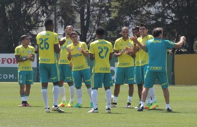 Palmeiras treino Academia (Foto: Felipe Zito)