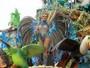 Renata Banhara volta ao carnaval após quatro anos: 'Feliz'